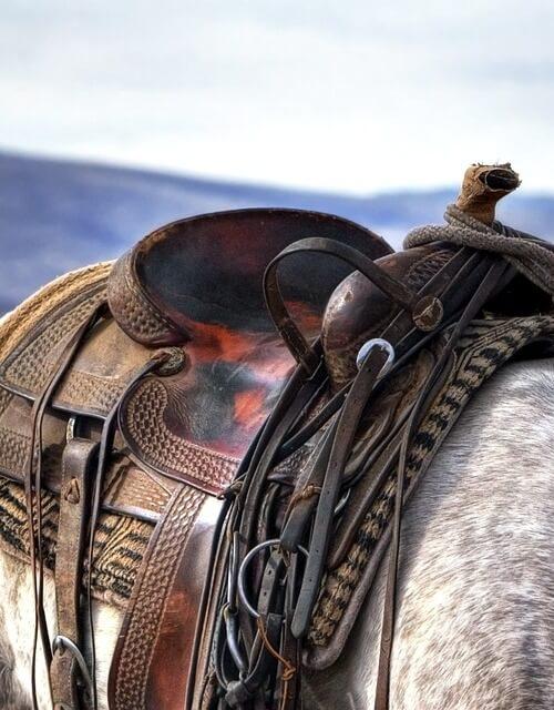 montura de caballo01