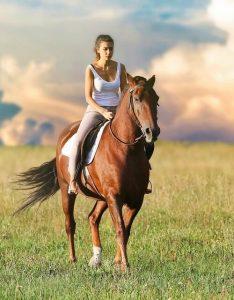 montura de caballo02