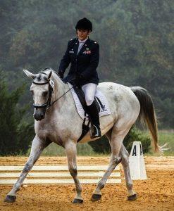 montura de caballo06